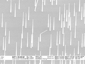 SEM image of epitaxial nanowire heterostructur...