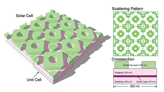 evolution-inspires-more-efficient-solar-cell-design-main (1)