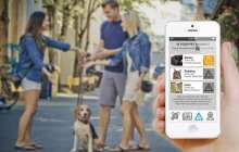 This App Recognizes Your Pet's Facial Features To Find Them When They're Lost