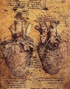 300px-Heart_and_blood_vessels_by_da_Vinci