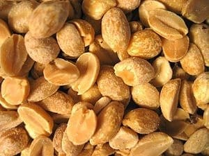Potential peanut allergy breakthrough garners Genentech's interest at Children's Hospital