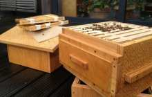 Open Source, Printable Hives Let Citizens Help Save The Bee Population