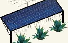 Stanford scientists model a win-win situation: growing crops on photovoltaic farms