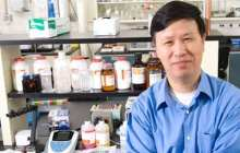 Opening the Door For Regenerative Medicine Through Stem Cells