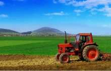 Sustainable green alternatives to fertilisers could boost food and energy security