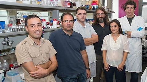 Nanoparticle technology triples the production of biogas