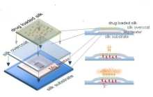 Wireless Electronic Implants Stop Staph, Then Harmlessly Dissolve
