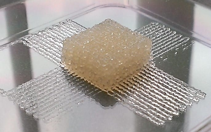 Scientists have developed a silk-based, 3-D printer ink for use in biomedical implants or tissue engineering. Credit: American Chemical Society