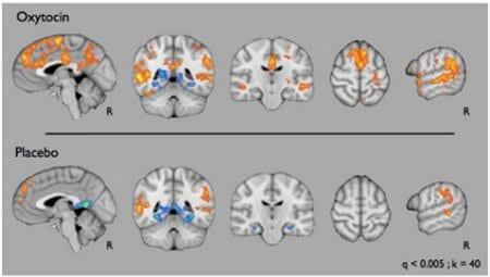 via www.autismspeaks.org