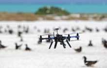 Drones revolutionize ecological monitoring