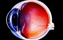 A new imaging technique that could revolutionize how eye health and disease are assessed