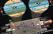 A solar-light-driven fully integrated microfluidic device could serve as an autonomous fuel-cell-based power source