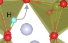 Bio-inspired computing can mimic forgetfulness to learn