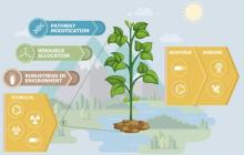 Plants as sensors for security threats?