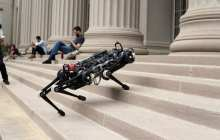 A blind robot that can climb stairs littered with obstacles