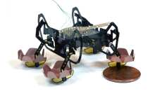 Next-generation robot can walk on land, swim, and walk underwater
