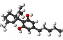 Cannabidiol is effective in eliminating the symptoms of depression on the same day - in rats