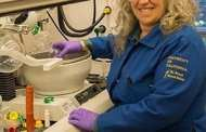 Chemists develop safe alternatives to phthalates used in plastics