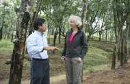 Land management for economic as well as environmental benefits in China