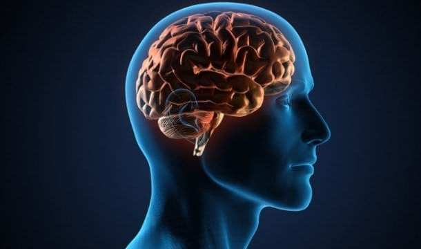 Reversing age-related memory loss with Transcranial Magnetic Stimulation