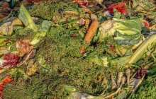 Wasted food can be affordably turned into a clean substitute for fossil fuels.