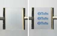 On-demand high resolution wrinkling for reversible printing