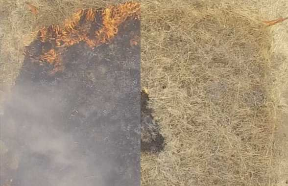 A gel-like fluid to help prevent wildfires