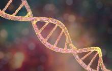 New gene correction therapy for Duchenne muscular dystrophy