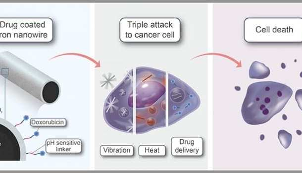 Multifunctional iron nanowires selectively obliterate cancer cells