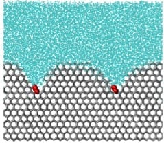 Cryogenics takes a big leap: New efficient polymers can prevent the growth of ice that damages cells