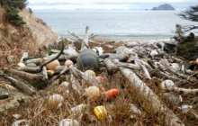 The implications of microplastics in the sea, on land and in the air