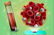 A new blood test detected more than 50 types of cancer as well as their location within the body