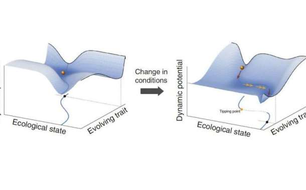 Small environmental changes trigger slow evolutionary processes that eventually precipitate collapse
