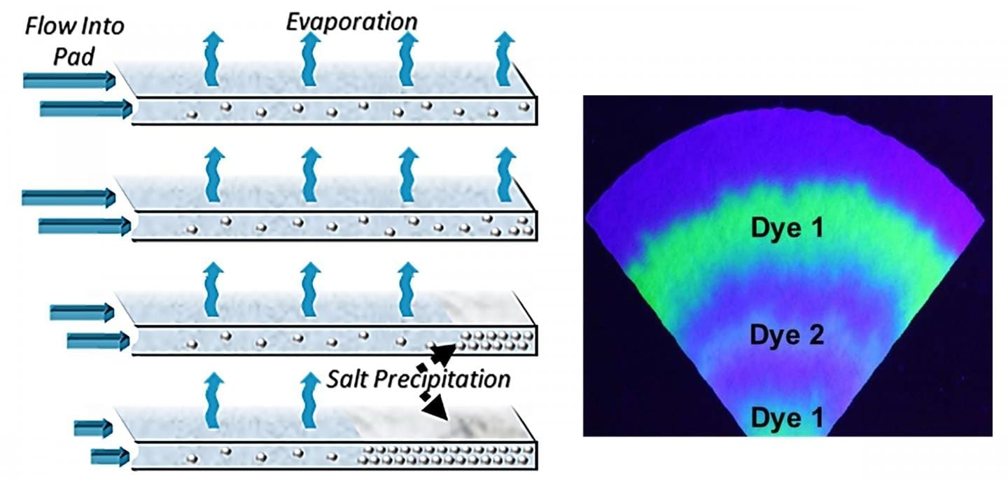 "The evaporation of sweat on paper pads could be used for fluid transport in wearables over long periods of time. The resulting dry layer of caked salts would preserve a ""time-stamped"" record of biomarkers of interest.  CREDIT Orlin D. Velev and co-authors, NC State University"