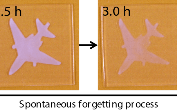 A soft and wet material that can memorize, retrieve, and forget information, much like the human brain