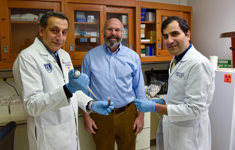From left: Drs. Babak Baban, John Morgan and Hesam Khodadadi.