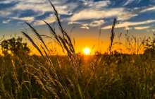 Could solar geoengineering have a good effect on agriculture?