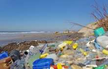 The common bacteria E. coli can be deployed as a sustainable way to convert post-consumer plastic into vanillin