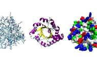 Transforming medicine with new research in protein sequencing
