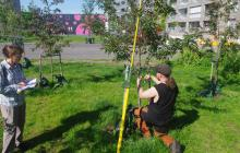 How to design efficient demo areas for urban carbon sequestration?
