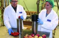 Improving frozen food quality, safety and energy use with a new isochoric freezing method