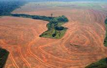 The push for a new environmental crime: Ecocide