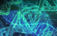Our genetic code is millions of times more efficient at storing data than existing solutions