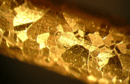 Replacing cyanide with a non-toxic alternative boosts gold ore production from 64 to 84 percent