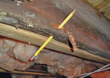 Destroyed crawl space structural wood in Circle Pines