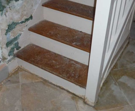 How to Protect Your Basement Stairs from Moisture