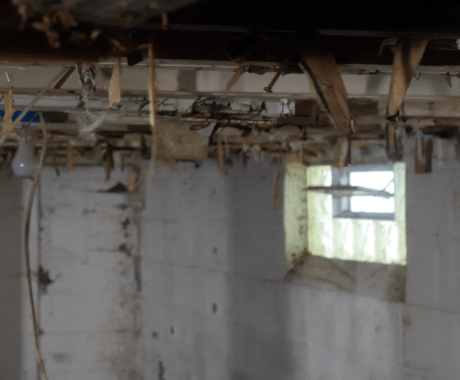 Is Ventilation Good for Your Basement? Here's What You Need to Know