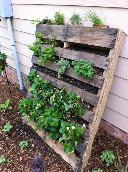pallet planter vertical garden Pallet Gardening | innovativegardening