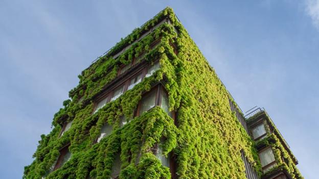 Automacao residencial e incentivos sustentaveis o caminho para um futuro verde