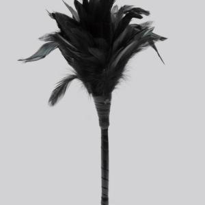 Fetish Fantasy Frisky Black Feather Tickler